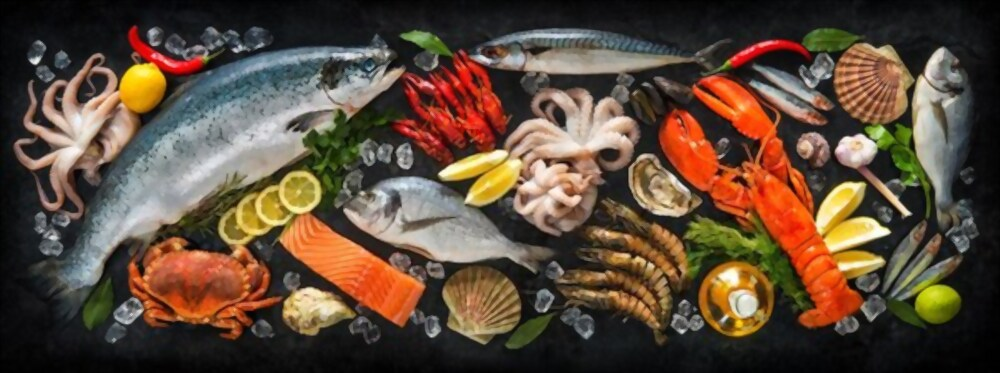 Are Fishes Really Good For Your Heart?